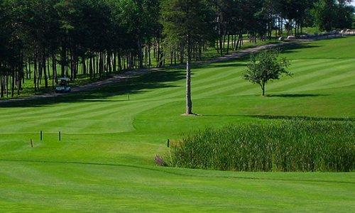 whitetail golf